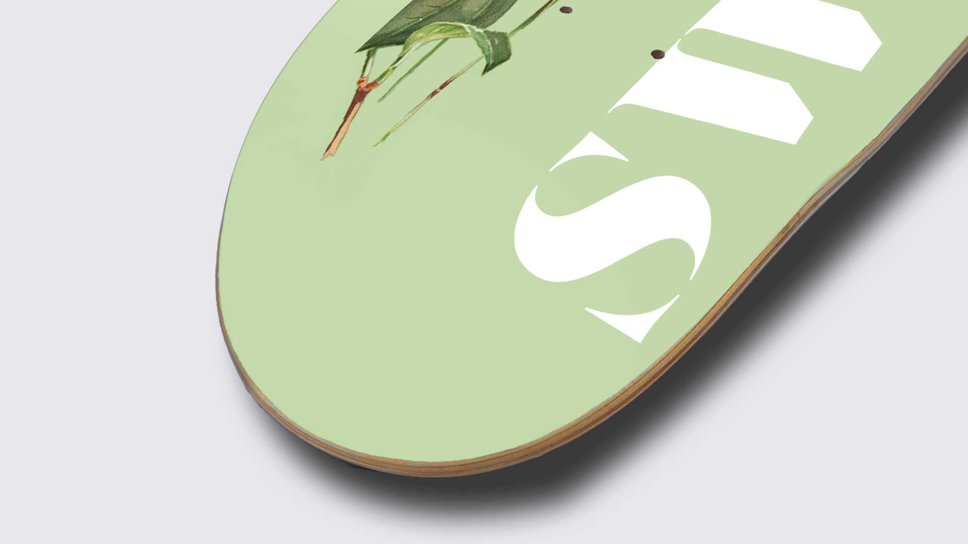 5_2_deck_skateboards_graphicdesign